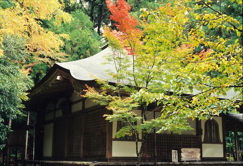 京都的秋天