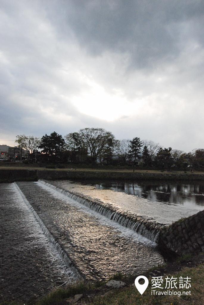 京都赏樱景点 半木之道 10