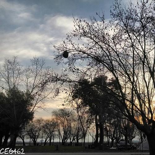 Autor: ceg462