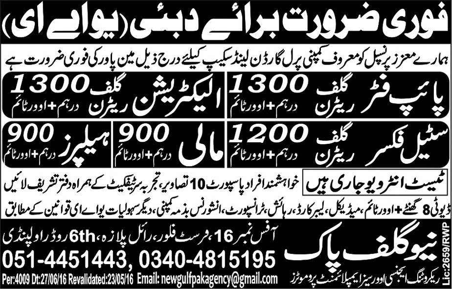 Urgently Required for UAE New Gulf Pak