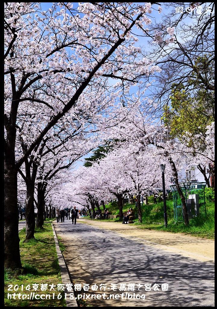 2014京都大阪賞櫻自由行-毛馬櫻之宮公園DSC_1994