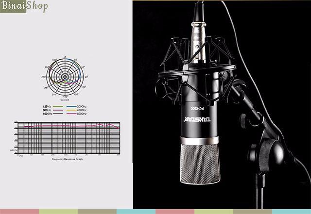 Takstar-PC-K500-mic-4-compressed