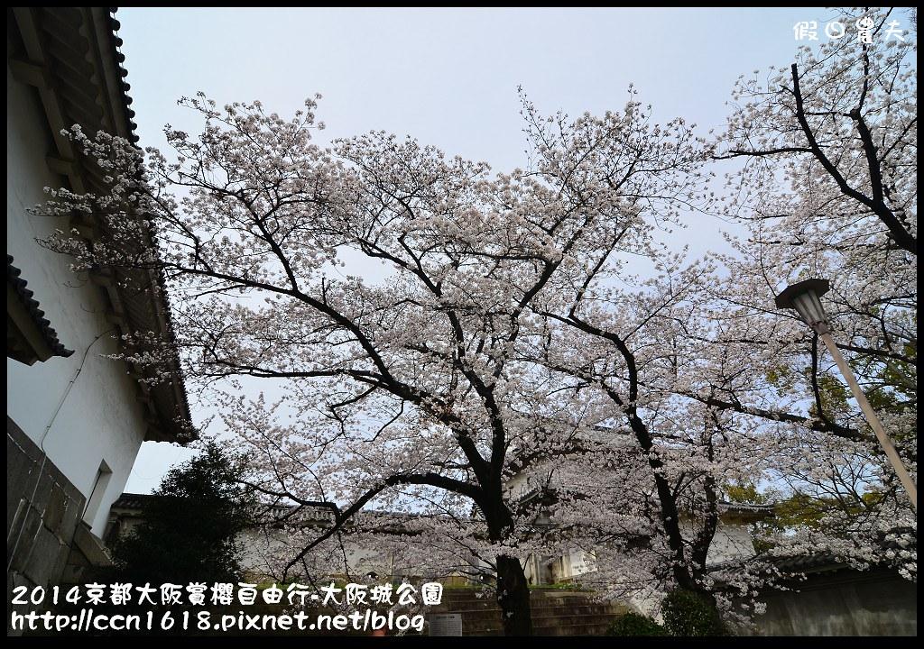2014京都大阪賞櫻自由行-大阪城公園DSC_1913