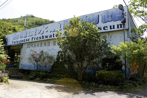淡水魚博物館於1998年開幕,目前館內有32種以上的台灣淡水魚。(圖片攝影:羅聿)