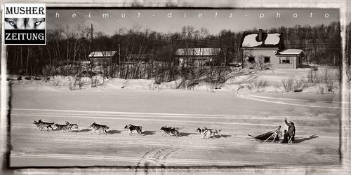 Finnmarkslopet 2015 - Checkpoint Neiden II: Kjell Brennodden