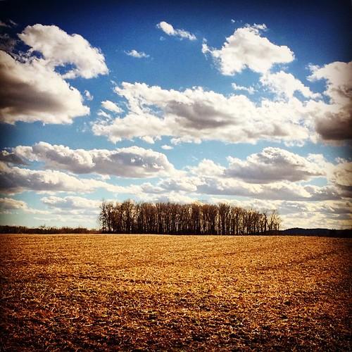 square squareformat hefe iphoneography instagramapp uploaded:by=instagram foursquare:venue=4c480d1c96abd13ac3dc7201