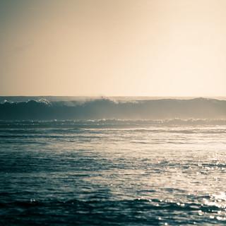 Freedom in ocean...