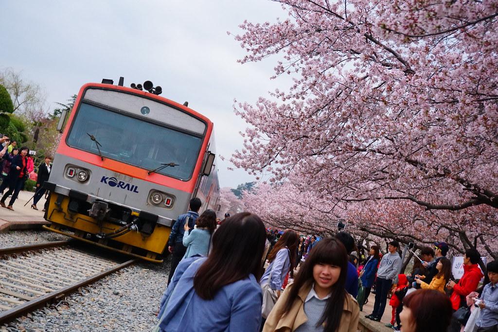 慶和車站 (2)