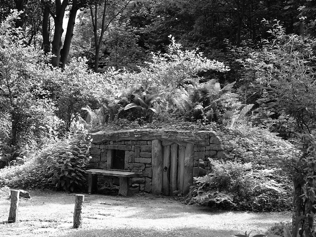 Little house in the woods B&W