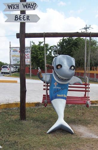 evil shark