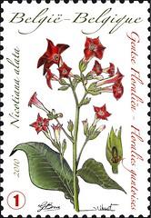 06 Floralies timbrea
