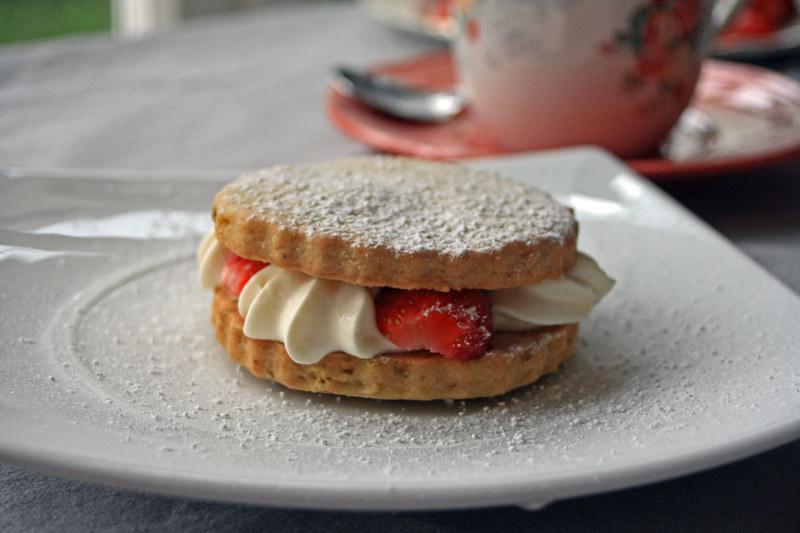 shortcake_modifié-1