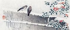 Heavenly bamboo and Eurasian tree sparrow
