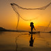 Fisherman throwing net at sunrise by visootuthairam1