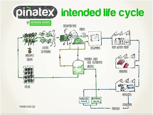 搖籃到搖籃的鳳梨皮革。圖片來源:Piñatex 臉書