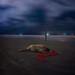 Hinder. by Adam Hague