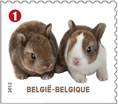 09 Animaux de compagnie timbrei