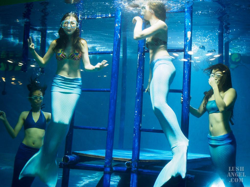 crown-regency-mermaid-class