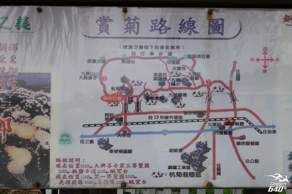 苗栗賞油桐-客家大院九華山天空步道25