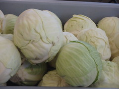 carving(0.0), dish(0.0), gourd(0.0), cabbage(1.0), vegetable(1.0), produce(1.0), food(1.0),