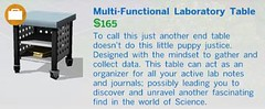 Multi Functional Laboratory Table