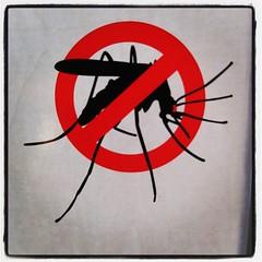 Viktigt verktyg för att hålla myggen på avstånd aktiverat.