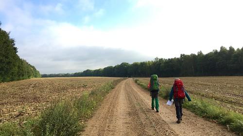 Door de velden