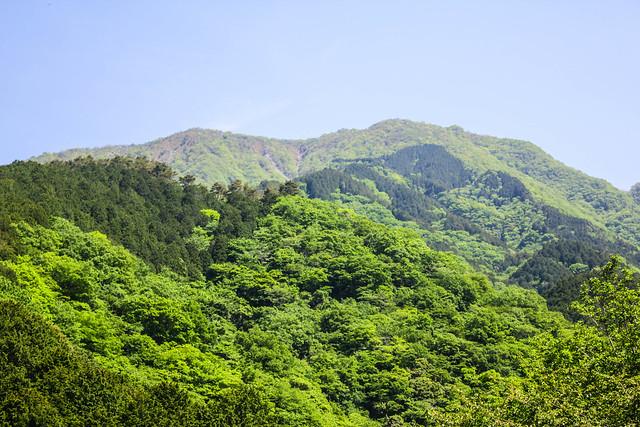 2014-05-24_00031_鍋割山.jpg