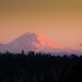 Mount Rainer by dreamscapepics