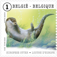 05 ANIMAUX timbre H loutre