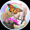 Spring Creator Kit Icon
