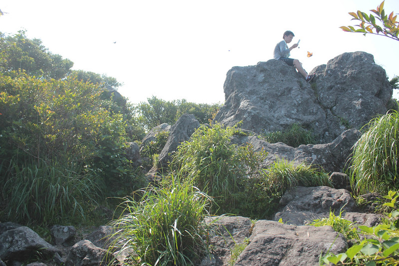 20140531-開聞岳-0393.jpg
