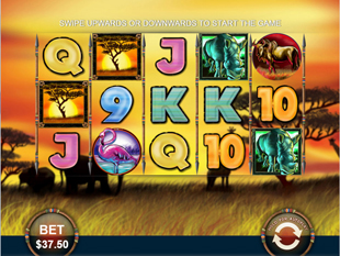 Safari Heat Mobile slot game online review