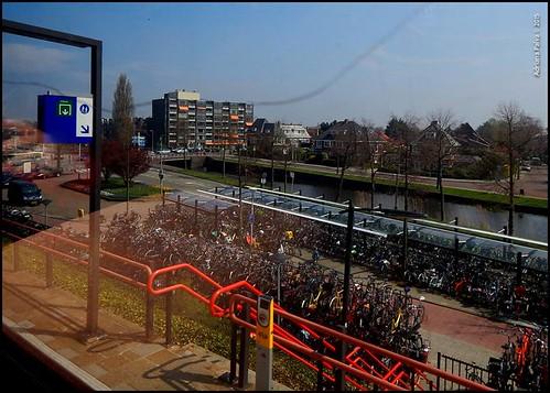 De Haia a Amsterdam. Por Adriana Paiva