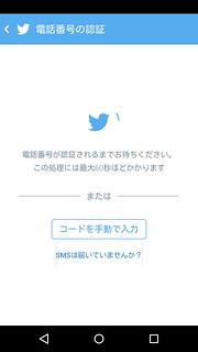 Twitter アプリ PINコード入力