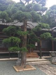 Photo:慶龍寺 By cyberwonk