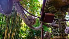 Jungle Cruise Boat Details