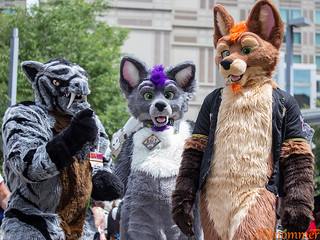 20160702_Anthrocon_IMG_0333 | by antnommer