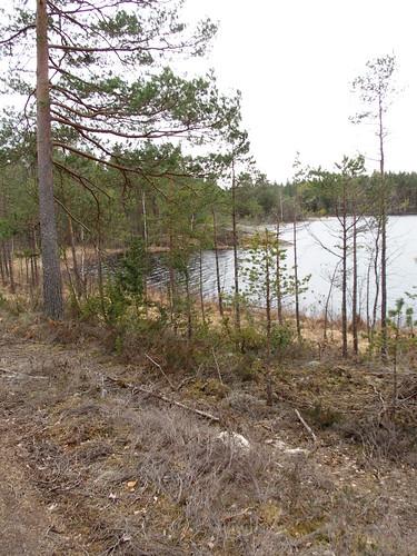 SÖ E30 Ålsjön