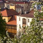 Prahan kevät