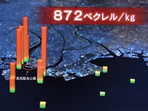 2012年NHK節目截圖,東京灣沿岸污染狀況。