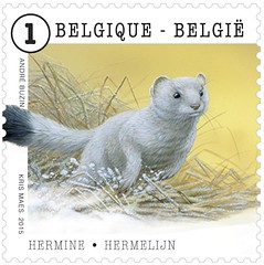 05 ANIMAUX timbre G hermine