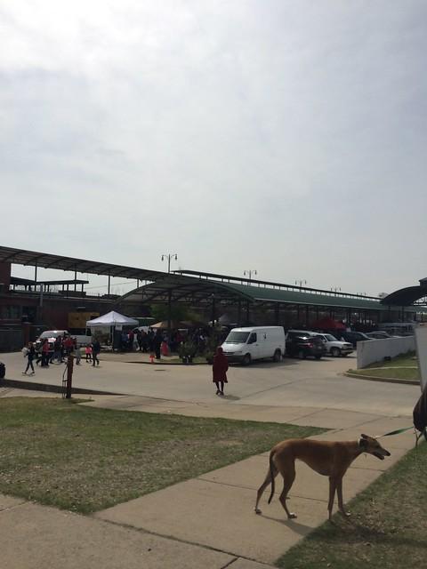Memphis Farmer's Market Opening Day 2014