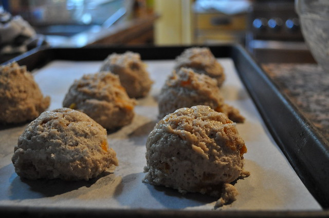 Breakfast Apricot Scones