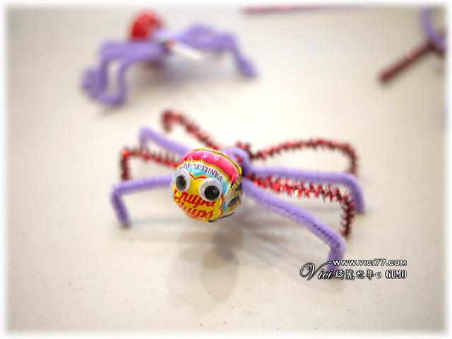 0331毛根蜘蛛027
