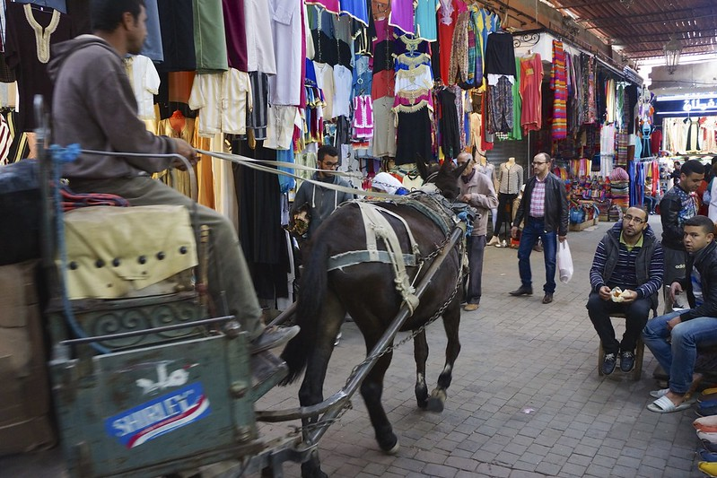 marrakesh 53