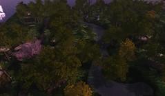 Tangleshimmer Grove