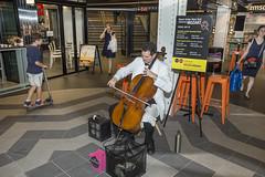 MTA MUSIC Celebrates Mozart