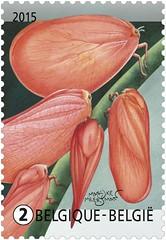 09 Plant of dier zegel1
