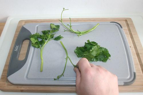 14 - Petersilienblättchen von Stielen zupfen / Pick parsley leaflets